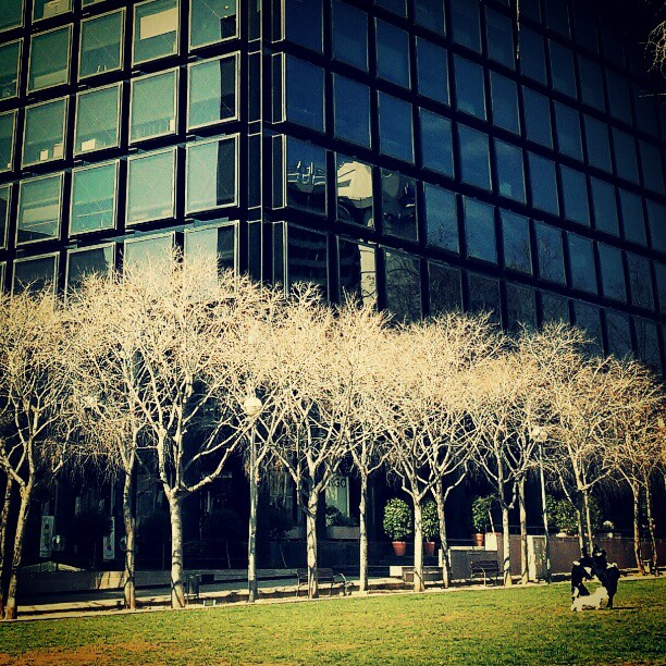 Jardins de Clara Campoamor (photo)